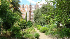 Chelsea Physic Garden - Wednesdays until 10pm (July and August) | £9