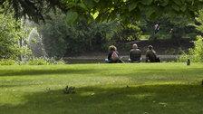 Greenwich Park - © Anne Marie Briscombe
