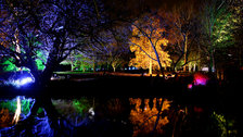 Syon Park's Enchanted Woodland