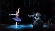 English National Ballet: The Sleeping Beauty by Patrick Baldwin