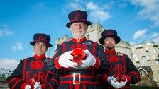 'Blood Swept Lands and Seas of Red' at the Tower of London by Richard Lea-Hair/Historical Royal Palaces
