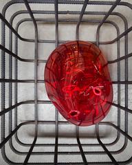 Mona Hatoum - Cellules detail