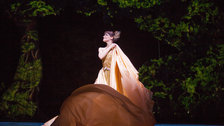 Dutch National Ballet: Cinderella by Angela Sterling