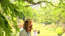 Wild Gardens, Tania Pascoe