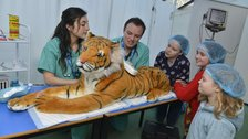Vets in Action by ZSL London Zoo