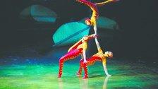 Cirque Du Soleil: Ovo by Benoit Fontaine, 2009, Cirque du Soleil Inc