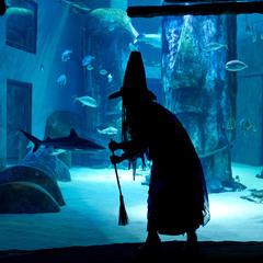 SEA LIFE London: Halloween Ascarium