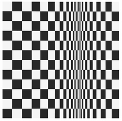 Bridget Riley by Bridget Riley