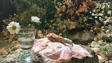 British Flowers Week - Worm display by Terri Chandler and Katie Smyth at Garden Museum