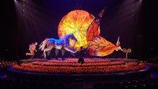 Cirque du Soleil: Luzia by Matt Beard
