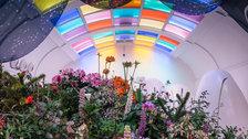The Mayfair Flower Show