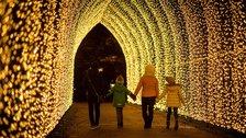 Christmas at Kew by Jeff Eden / RBG Kew