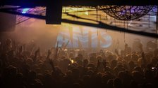 ANTS at fabric