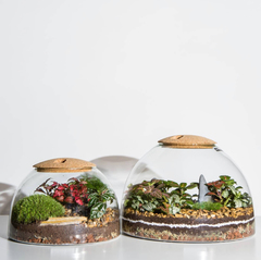 Mother's Day Terrarium and Gin Tasting Workshop